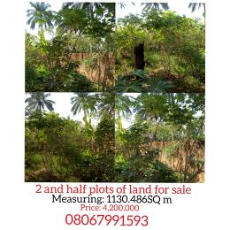 Land for sale Along rev fr Ede's university Nike enugu Enugu Enugu