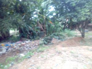1 bedroom mini flat  Mixed   Use Land Land for sale Ibafo Obafemi Owode Ogun