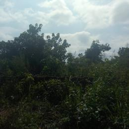 Residential Land Land for sale Mcc New Road Wetheral Owerri Imo State Owerri Imo