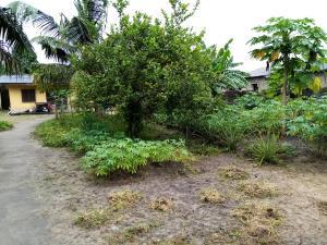 Mixed   Use Land Land for sale Agbara-Igbesa Ogun