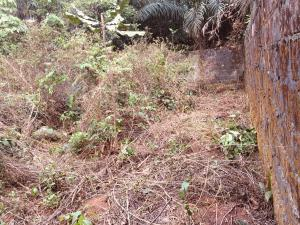 Residential Land Land for sale New road Obio-Akpor Rivers