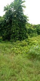 Serviced Residential Land Land for sale Green Lagoon Estate, Bogije Ibeju-Lekki Lagos