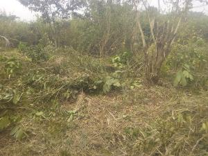 Land for sale  Mase village Off Iseyin Ibadan  Expressway, 25 minutes drive from the road Iseyin Oyo