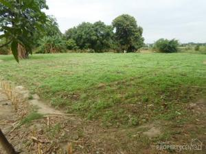 Land for rent Idiya village Off iseyin Oyo Road 25 minutes drive from the expressway Iseyin Oyo