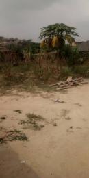 Mixed   Use Land Land for sale Oke-Ira Ogba Lagos