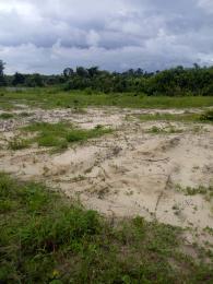 Commercial Land Land for sale Asegun Village, Ibeju Lekki Local Government Area, Lagos. LaCampaigne Tropicana Ibeju-Lekki Lagos