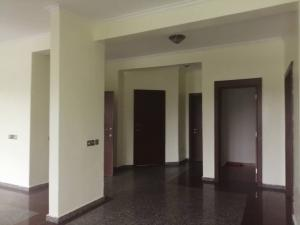 2 bedroom Flat / Apartment for rent Alexander Avenue Ikoyi Lagos