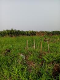 Mixed   Use Land Land for sale Chief Augustine street, Omonile pure water, Abule-Ado, Festac Amuwo Odofin Lagos
