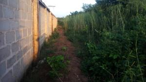Mixed   Use Land Land for sale Ogbaku Onitsha express road ,behind heavenly road church Ogbaru Anambra
