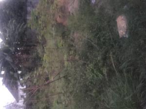 Land for sale Rumuodumaya Obia-Akpor Port Harcourt Rivers - 0