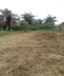 Residential Land Land for sale Aduramigba Beside Bolanle Osogbo Osogbo Osun