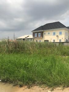 Mixed   Use Land Land for sale Near the D'Cherub School at a corner piece  Badore Ajah Lagos