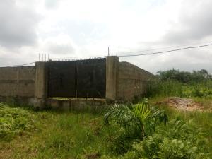 Residential Land Land for sale Abule Ado Satellite Town Amuwo Odofin Lagos
