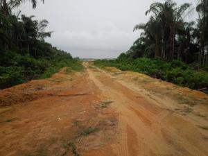 Land for sale Usiefrun Ekrokpe Road Ughelli South Delta