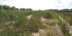 Residential Land Land for sale Oko Ado, very close to LBS Ajah Lagos