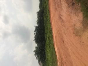 Residential Land Land for sale Warewa Arepo Arepo Ogun